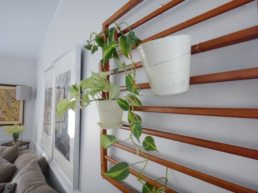 DIY Plant Hanger with Repurposed Baby Gates (14)