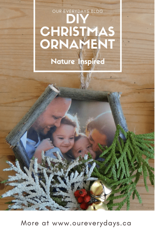 OUR EVERYDAYS BLOG Nature Inspired Christmas Ornaments