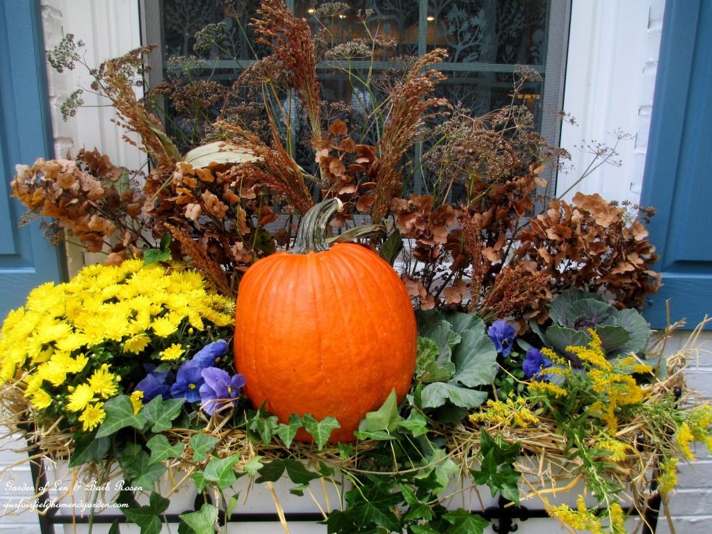 Pumpkin Seed Planters