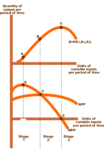 Figure 1. Graph of total, average, and marginal product, based on a quadratic production function, from Wikipedia.