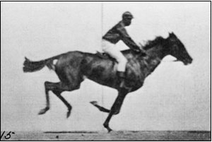 Muybridge still