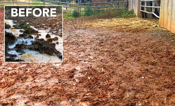 Mud Abatement Update