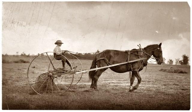 Kid on a hay rake 1915
