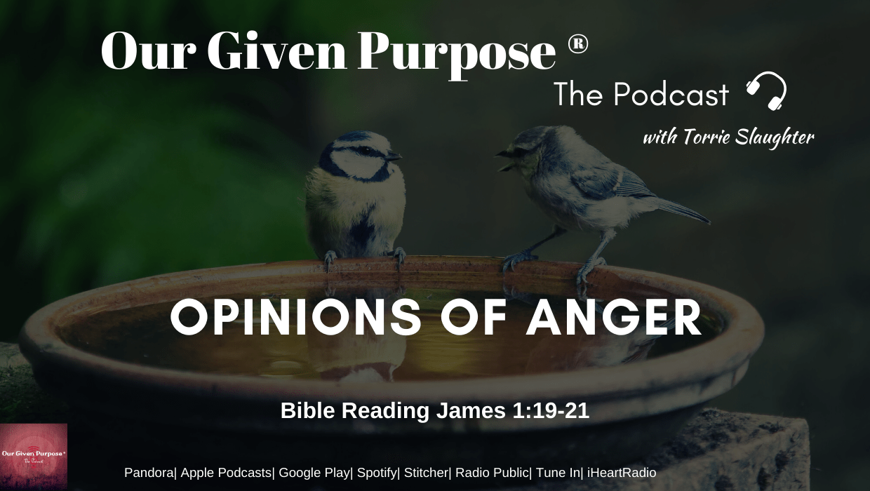 Opinions of Anger, The Podcast