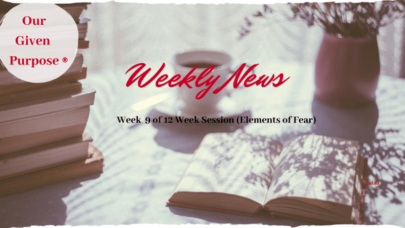 Weekly News Vol 62