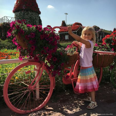 Dubai Miracle Garden | Discover the UAE | OurGlobetrotters.Com