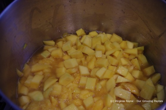 Mango chutney 3 2013