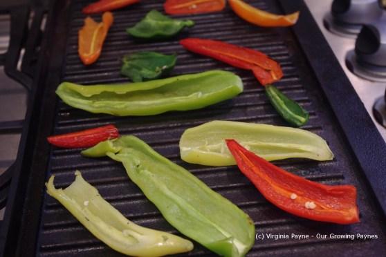 Fire roasted salsa 7 2013