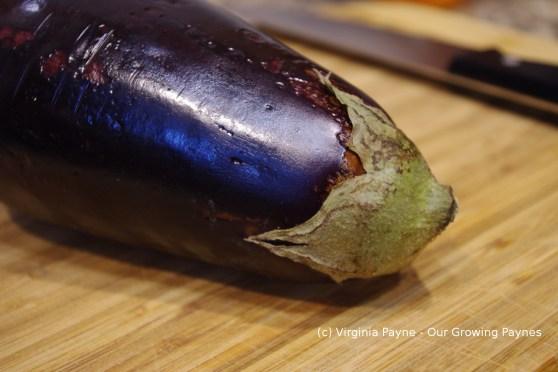 Eggplant parmesan 1 2014