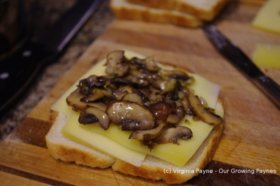 Mushroom grilled cheese 2 2014
