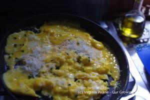 Omelette 5 2014