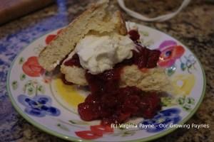 Gooseberry shortcake 4 2014