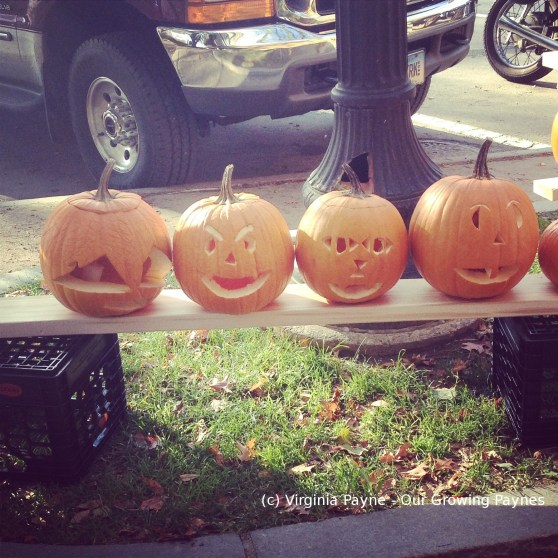 Pumpkinfest 3 2014