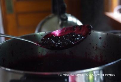 Black currant jam 3 2015