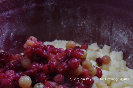 Pear gooseberry cake 4 2016.JPG