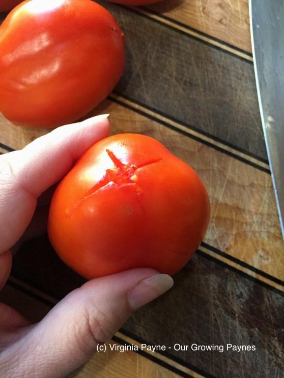 Tomato Jam 2 2017