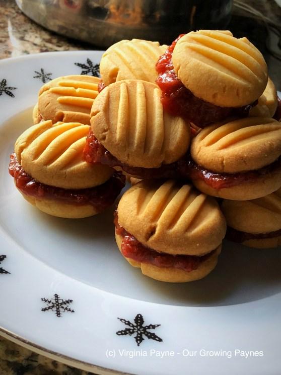 Custard biscuits 7 2018
