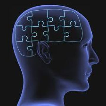 An image of a human head with a brain replaced by puzzle pieces