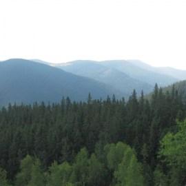 Національний природний парк «Гуцульщина» отримає у постійне користування майже 1,5 тис. га земель