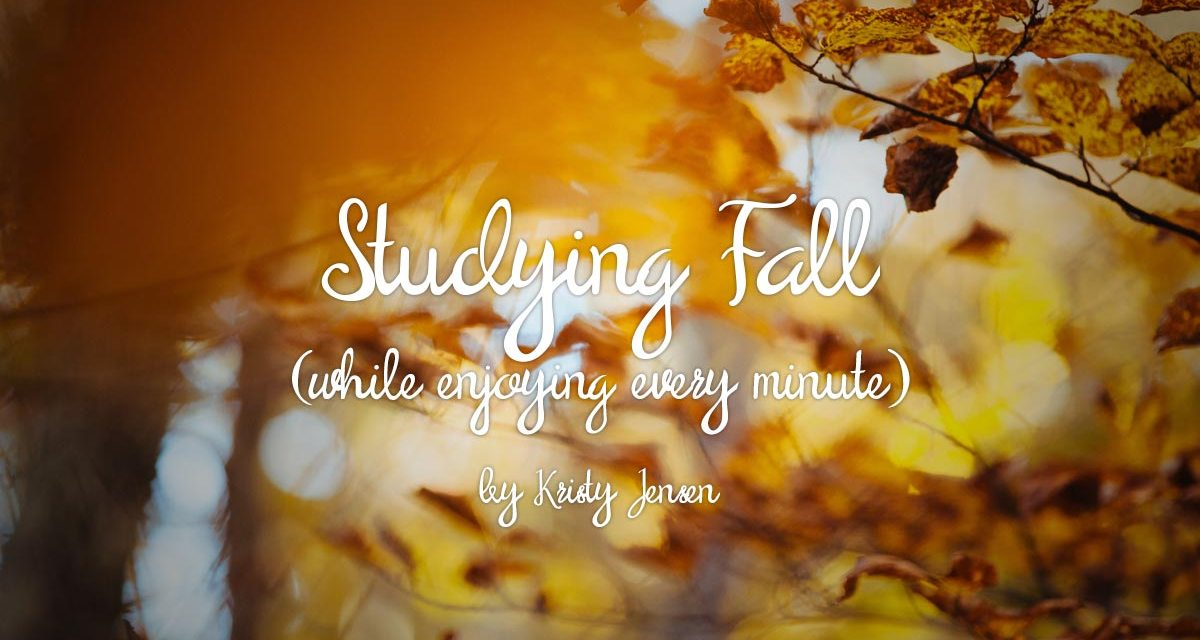 Studying Fall While Enjoying Every Minute