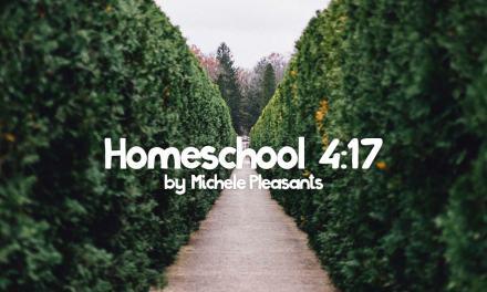 Homeschooling 4:17 by Michele Pleasants