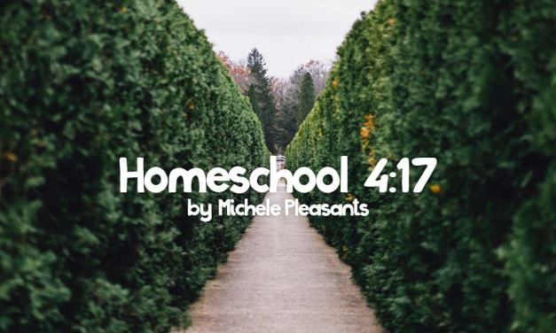 Homeschooling 4:17 by Michele Pleasants