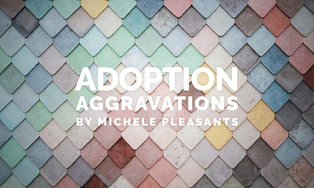 Adoption Aggravations