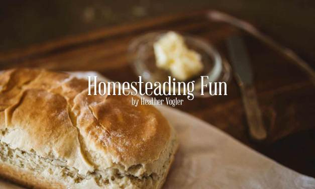 Homesteading Fun