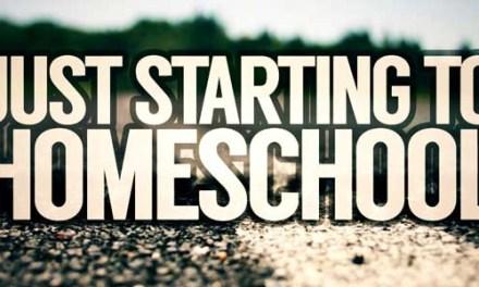 Just Starting to Homeschool