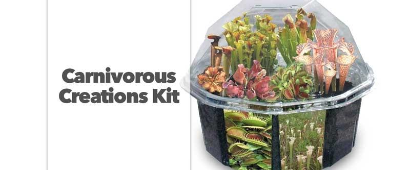 Carnivorous Creations Kit