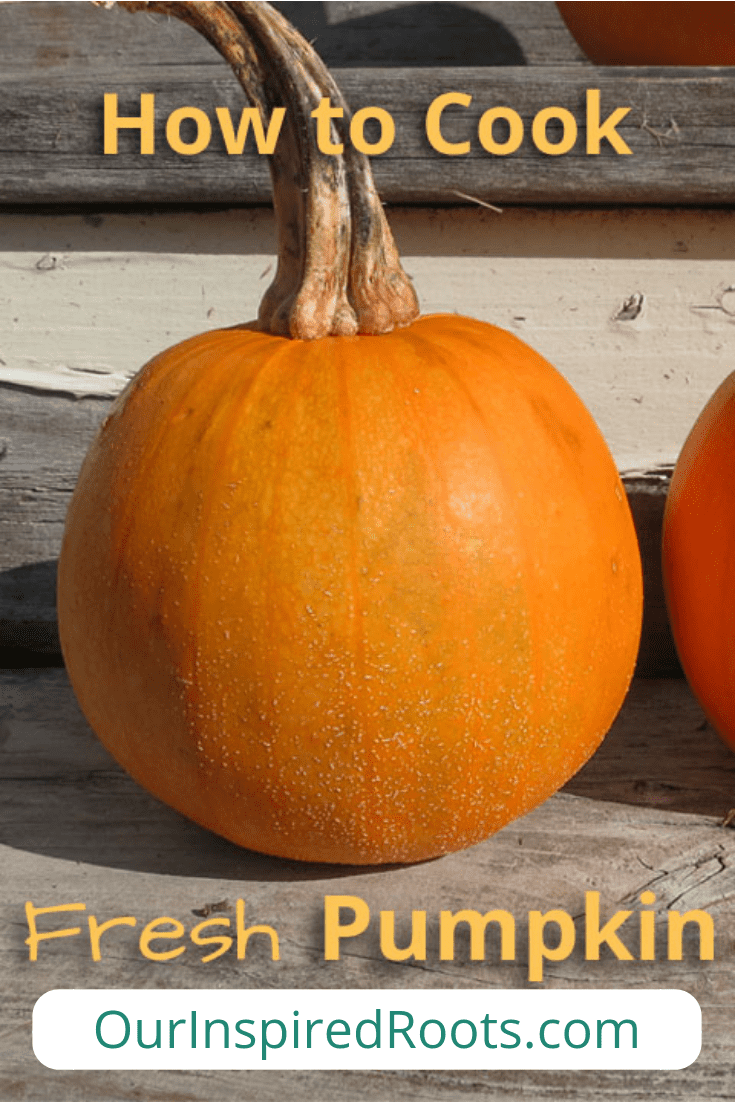 Wondering how to cook fresh pumpkin? It's easy. Find out the best way to cook a pumpkin for making homemade pumpkin puree. #freshpumpkin #pumpkin