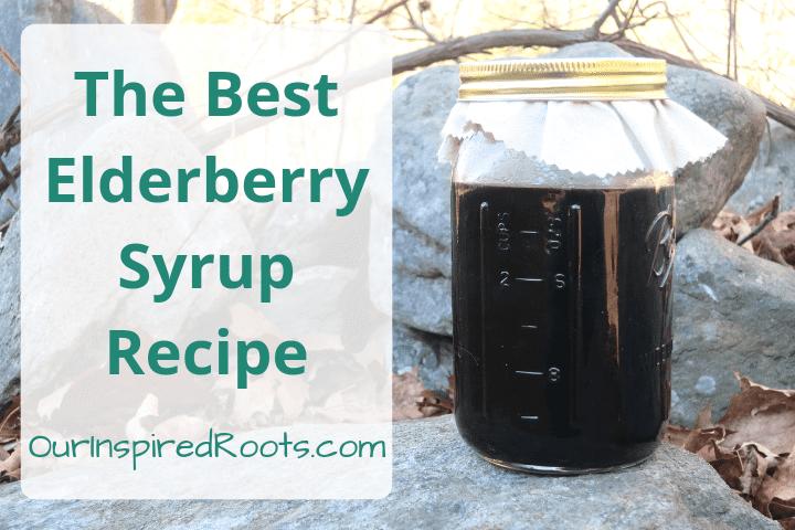 The Best Elderberry Syrup Recipe