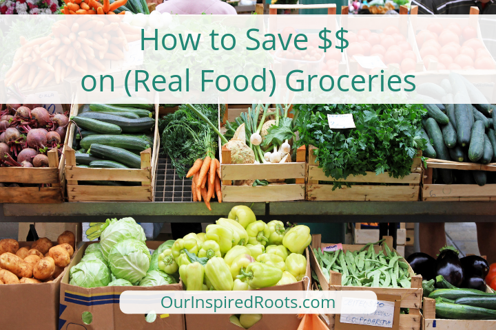 How to Save $500 on Groceries this Month [AIP, Paleo, & Whole Food]