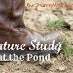 Nature Study at the Pond