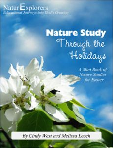 Easter-themed, Christian nature study