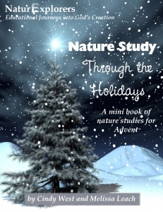 Advent themed nature study from Shining Dawn Books
