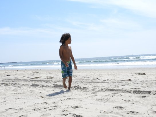 The beach is his classroom!