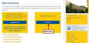lic e services servicing