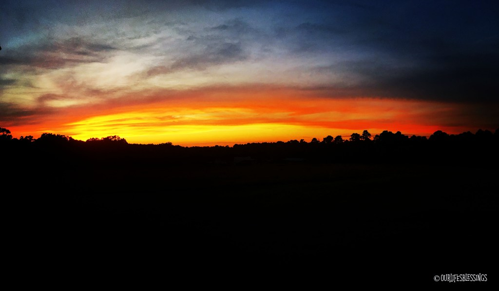Sunset OLB