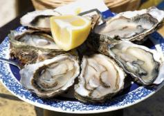 famous-malpeque-oysters