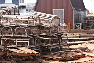Lobster_traps_Prince_Edward_Island_2011