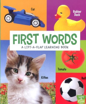 FIRST WORDS - A Lift-A-Flap Learning Book (Kid's Educational Books)