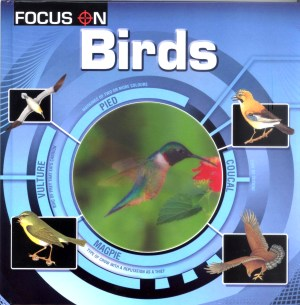 FOCUS ON Book Series - BIRDS (Kid's Educational Books)