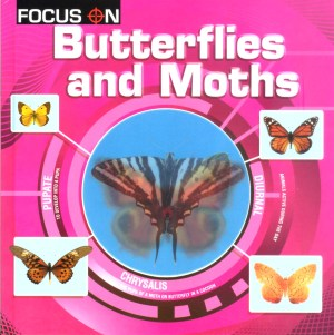 FOCUS ON Book Series - BUTTERFLIES AND MOTHS (Kid's Educational Books)