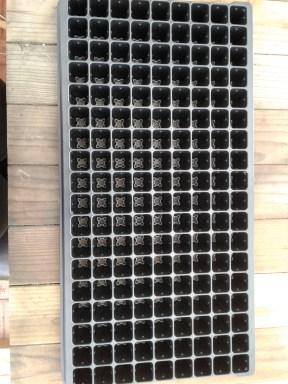 plug-tray
