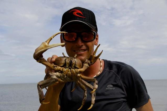 Crabe trouvé sur la plage avant le départ