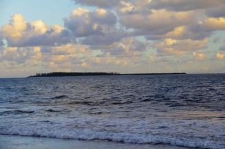 L'îlot brosse