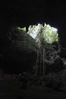 Au bout de la grotte, un puit de lumière