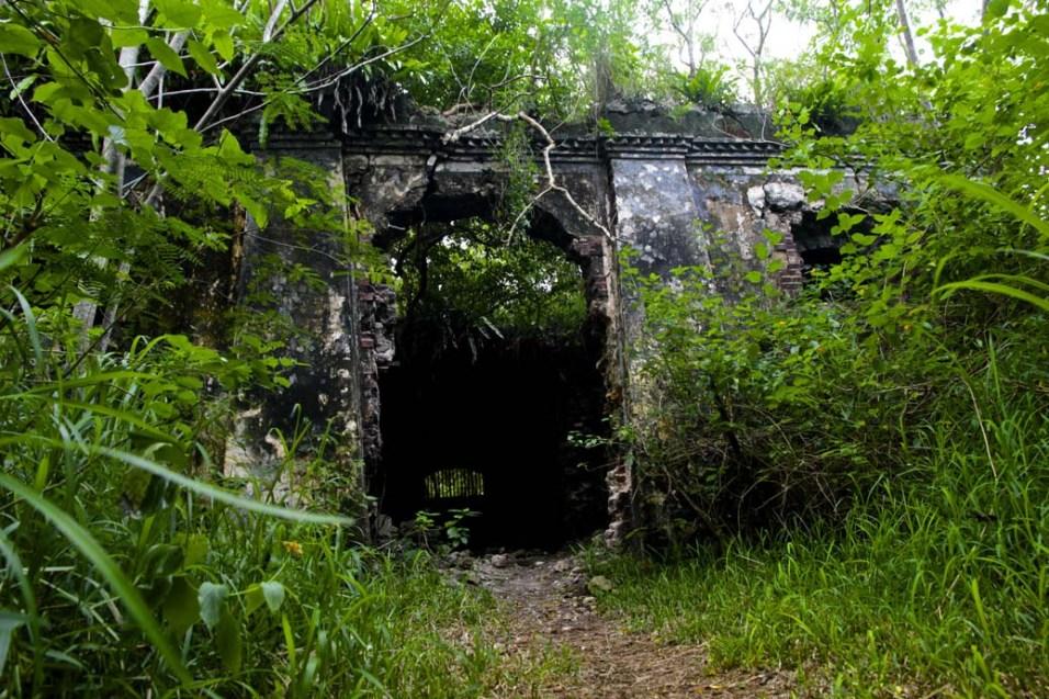 Ruines du bagne envahi par la végétation tropicale.