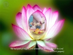 Sri Gopinath lotus feet